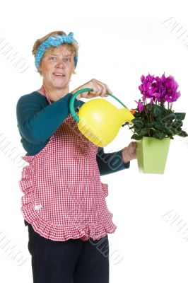 Taking care of the flowers
