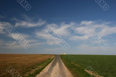 footpath, fields and cirrus clouds