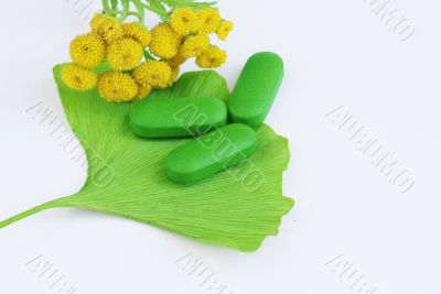 Closeup of pills and fresh Ginkgo Biloba