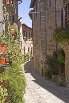 Spello - Typical old street with plants and flowers