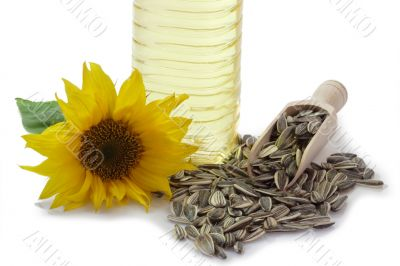 Sunflower Seeds with Blossom and Oil