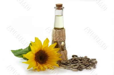 Salad Oil with Sunflower