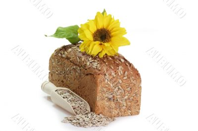 Bread with Sunflower Seed