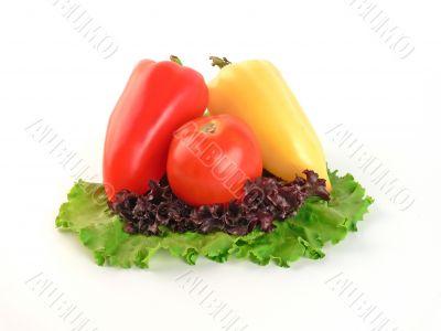Vegetable on salad leaves