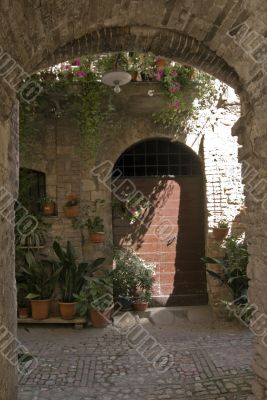 Spello - Typical house with potted plants and flowers