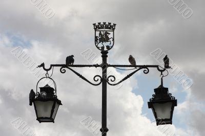 Pigeons sitting on the street lamp
