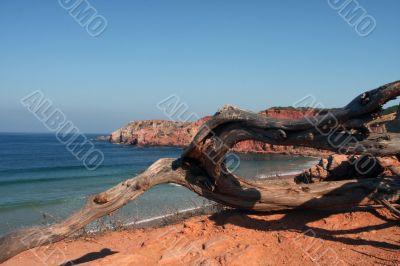 Beach on the Eastern Atlantic coast of Portugal