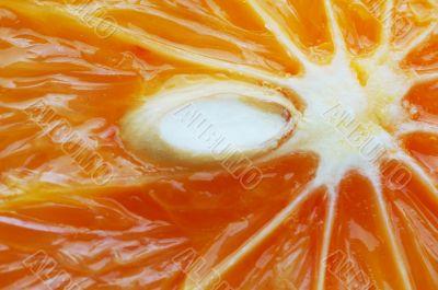 The heart of fruit. Orange.