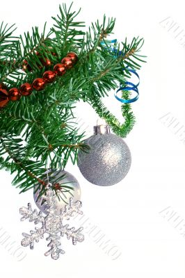 Fir tree branch with silver ball on a white background.