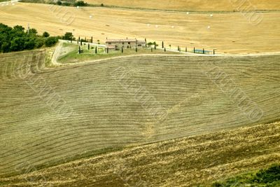 Landscape in Val d`Orcia (Tuscany)