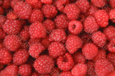 Appetizing raspberry background
