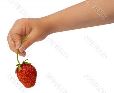 Strawberry in child`s hand