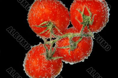 tomato,bubbles,juicy,swee t,red