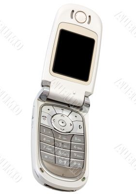 Silvery cellular telephone