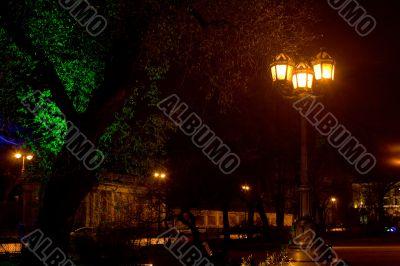 Late evening in Catherine garden