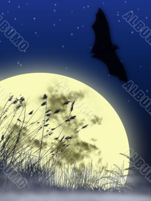 moon & bat