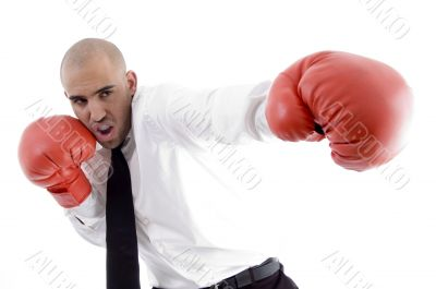 businessman in action wearing boxing gloves