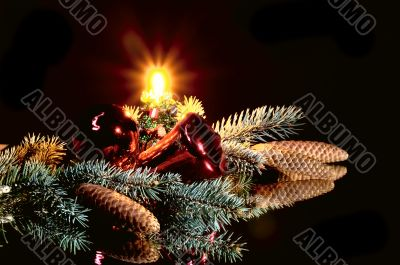 Christmas wonderful still life.