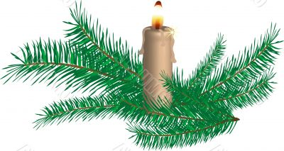 Candle and spruce twigs