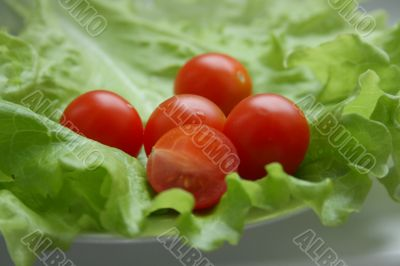 tomatos cherry on the plate