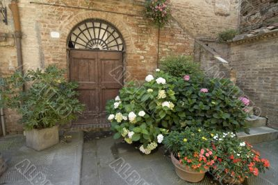 Buonconvento (Tuscany) - Door and potted plants