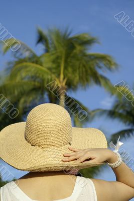 Tourist with tropical coconut trees