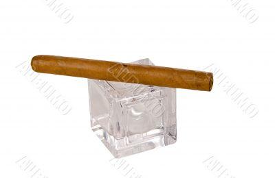 long brown havana cigar on glass cube