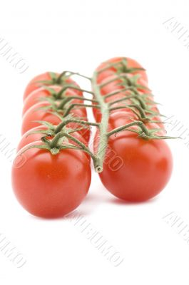 Raw tomato on white