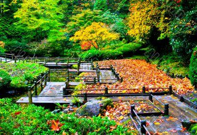 Pathway Through a Garden