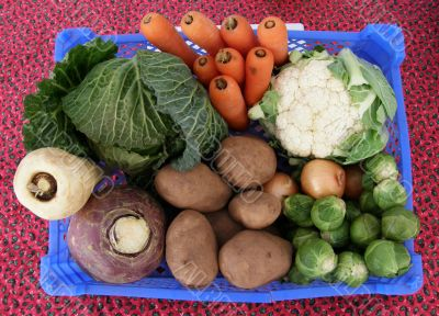 Winter vegetable collection