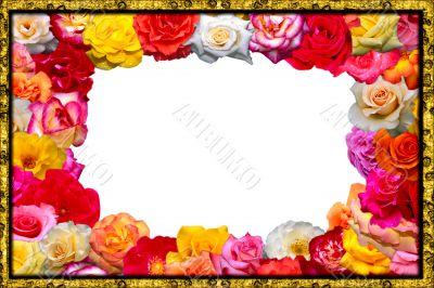 Festive floral frame