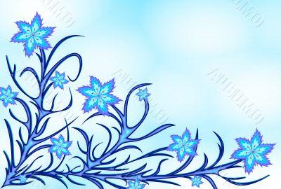 Blue lilyes