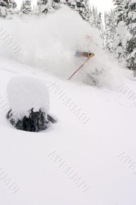 Skiier Shrouded by Snow