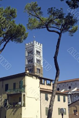 Lucca (Tuscany) - Houses, trees and belfry