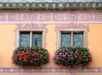 Flowered windows odfObernai townhall - Alsace
