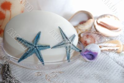 Two seastars on the soap close-up