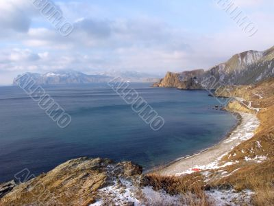 Winter gulf