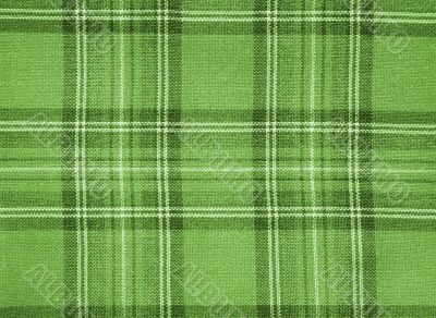 Green checked fabric