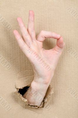 Gesture male hand through cardboard