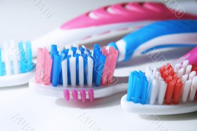 Close-up of tooth brushes