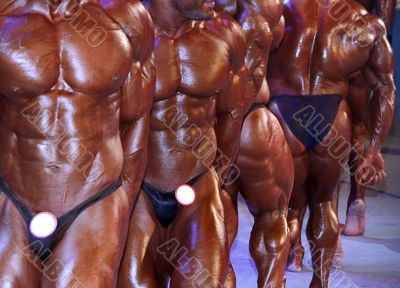 group of muscular male torsos