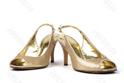 Gold  Women`s High-Heel Shoes