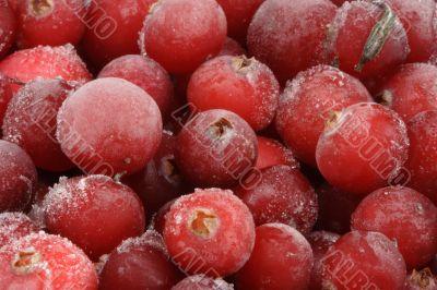 Frozen cranberry.