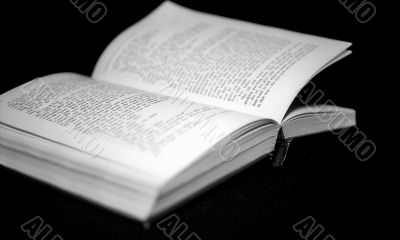 Pages of open book monochrome