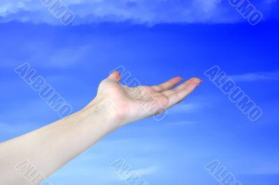 feminine hand