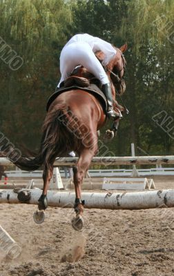 equestrian jumping over barrier
