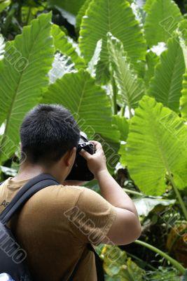 Tropical tourist taking photos