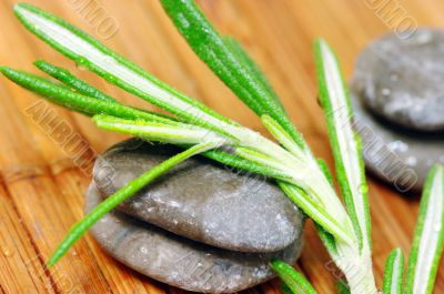 Spa stone with lavender leaves