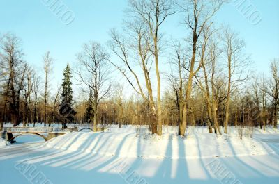 Short sunny winter day