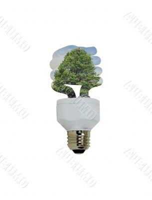 Going Green Lightbulb